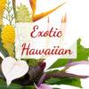 Exotic Hawaiian