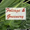Foliage & Greenery